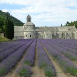 12 Provence